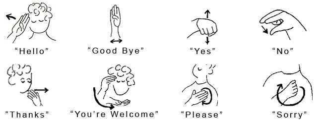 New Sign Language Recognition | Sunil Prakash &PZ01